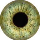 Vision Express - Company Logo